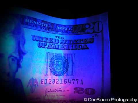 twenty_dollar_bill